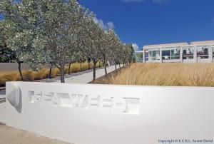 villa Seaweed